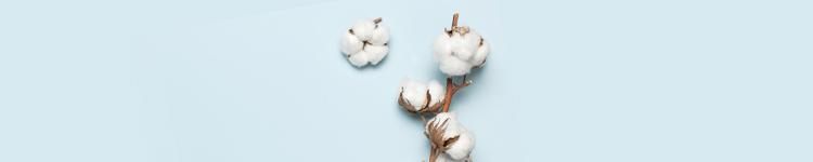 Baumwollhandschuhe