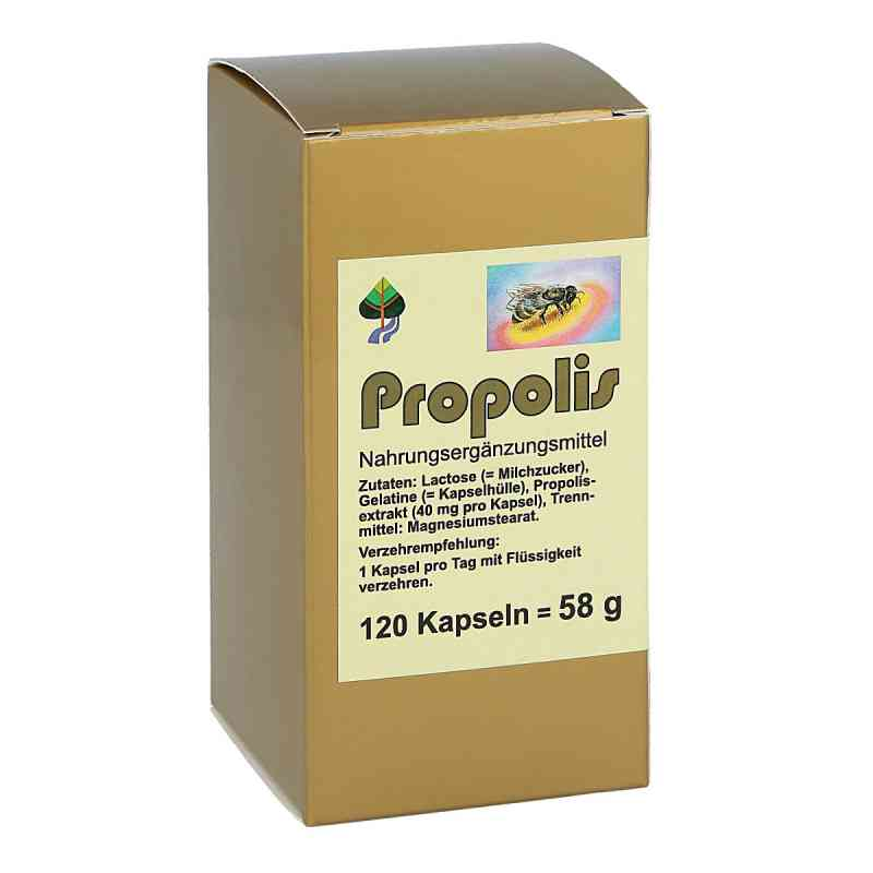 Propolis Kapseln bei apotheke.at bestellen