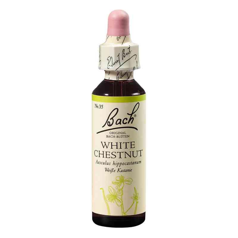 Bachblüten White Chestnut Tropfen  bei apotheke.at bestellen