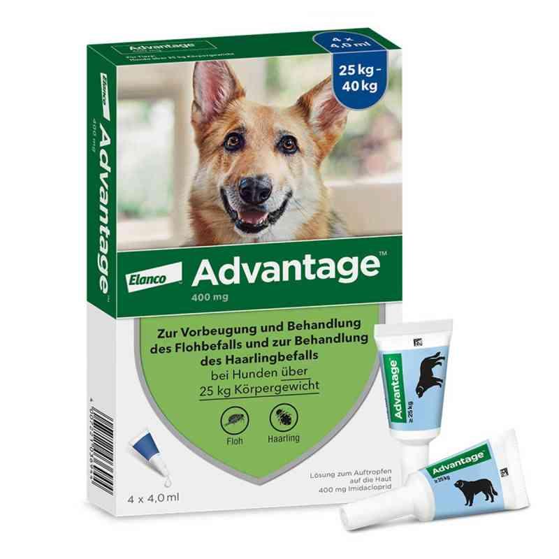Advantage 400 für Hunde Lösung  bei apotheke.at bestellen