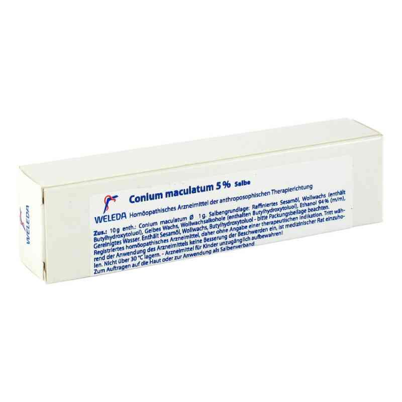Conium Maculatum 5% Salbe  bei apotheke.at bestellen