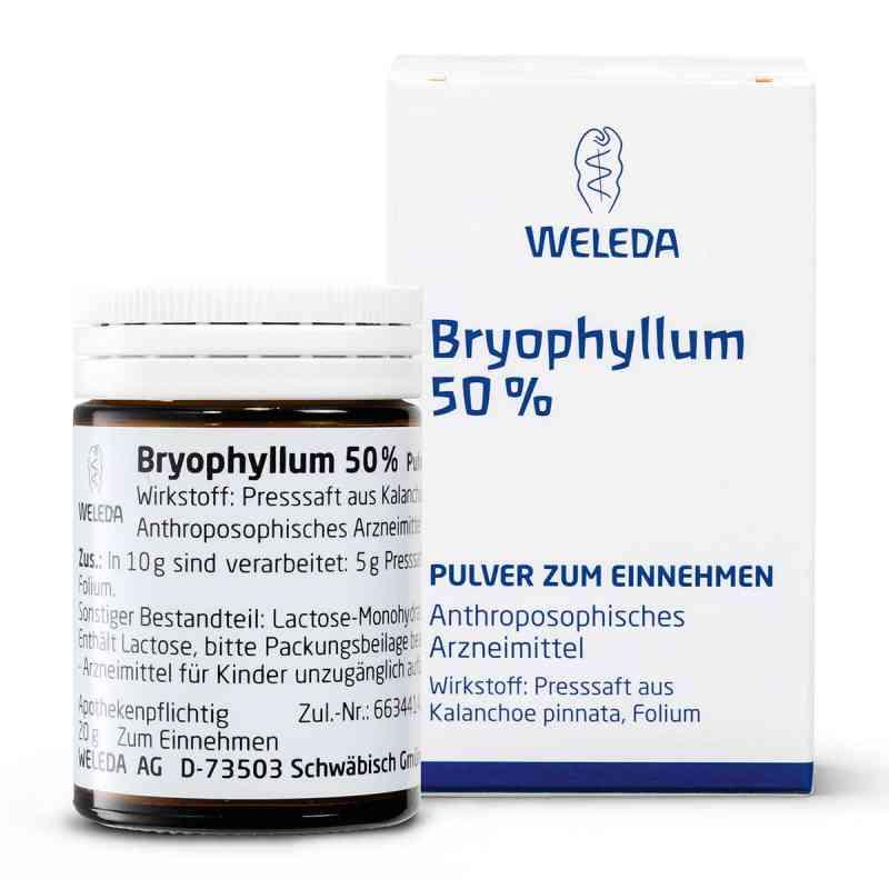 Bryophyllum 50% Pulver zum Einnehmen  bei apotheke.at bestellen