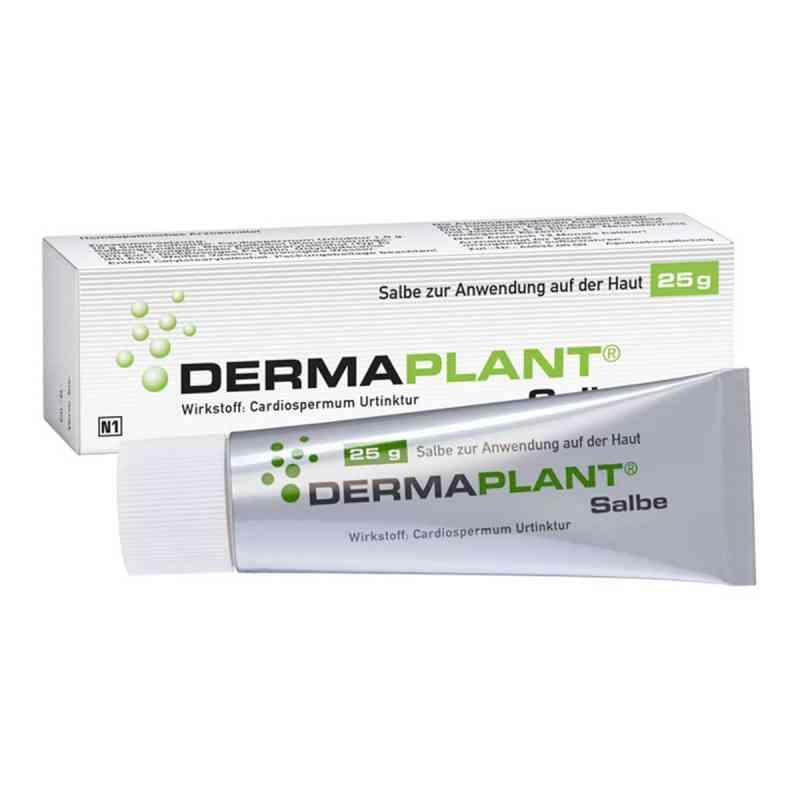 Dermaplant Salbe  bei apotheke.at bestellen