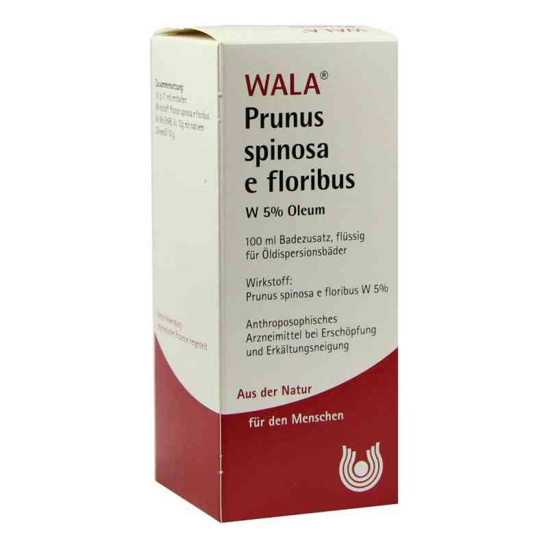 Prunus Spinosa E Flor. W 5% Oleum  bei apotheke.at bestellen