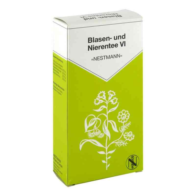 Blasen- und Nierentee VI Nestmann bei apotheke.at bestellen