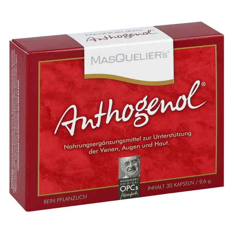 Anthogenol Masquelier Opc Kapseln  bei apotheke.at bestellen