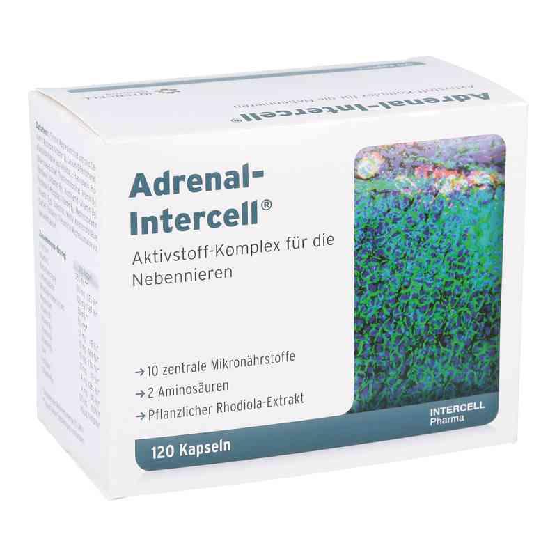 Adrenal-intercell Kapseln  bei apotheke.at bestellen
