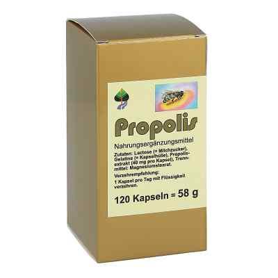 Propolis Kapseln