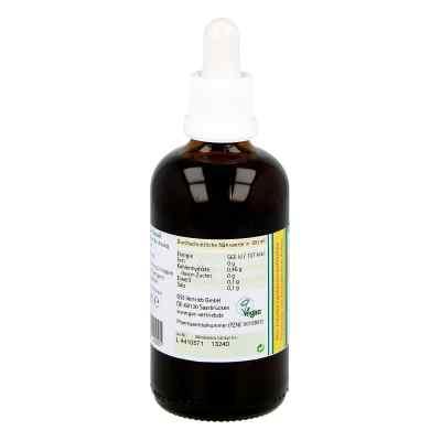 Koriander Extrakt Bio 23% V/v  bei apotheke.at bestellen