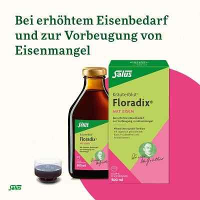 Floradix mit Eisen  bei apotheke.at bestellen