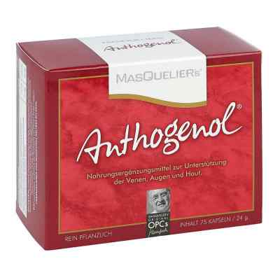 Opc Original Masqueliers Anthogenol Kapseln  bei apotheke.at bestellen