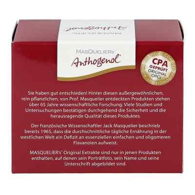 Opc Original Masqueliers Anthogenol Kapseln