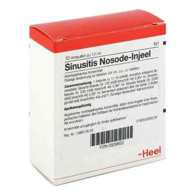 Sinusitis Nosode Injeel Ampullen  bei apotheke.at bestellen