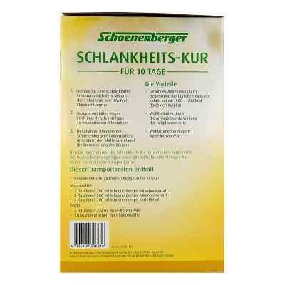 Schlankheitskur 5 Elemente Schoenenberger  bei apotheke.at bestellen
