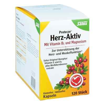 Protecor Herz-aktiv Kapseln  bei apotheke.at bestellen