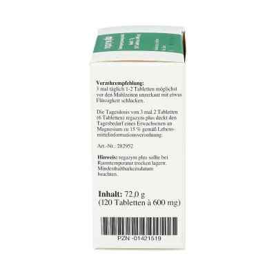 Regazym Plus Syxyl Tabletten  bei apotheke.at bestellen