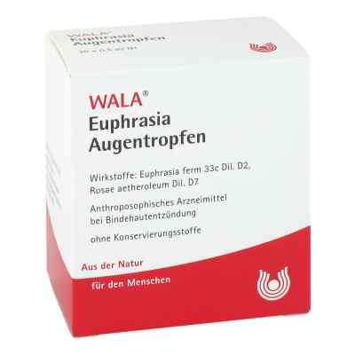 Euphrasia Augentropfen  bei apotheke.at bestellen