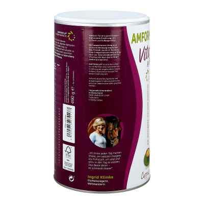 Amformula Diet Cappuccino Pulver  bei apotheke.at bestellen