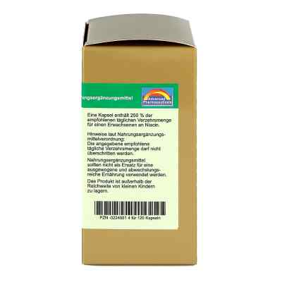 Niacin 40 mg pro Kapsel  bei apotheke.at bestellen