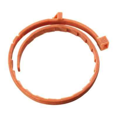 Bolfo Flohschutzband für kleine Hunde und Katzen  bei apotheke.at bestellen