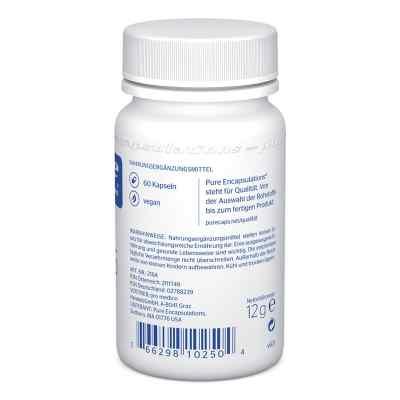 Pure Encapsulations Zink 15 Zinkpicolinat Kapseln  bei apotheke.at bestellen