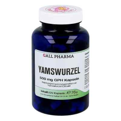 Yamswurzel 500 mg Gph Kapseln  bei apotheke.at bestellen
