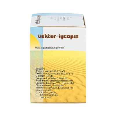 Vektor Lycopin Kapseln
