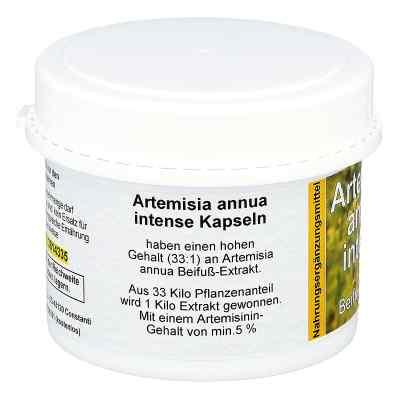 Artemisia Annua Beifuss Kapseln  bei apotheke.at bestellen