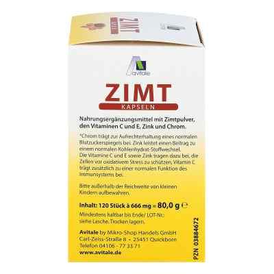 Zimt Kapseln 500 mg+Vitamin C+e  bei apotheke.at bestellen