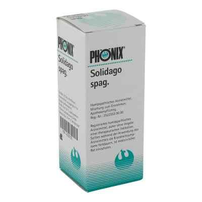 Phönix Solidago spag. Tropfen  bei apotheke.at bestellen