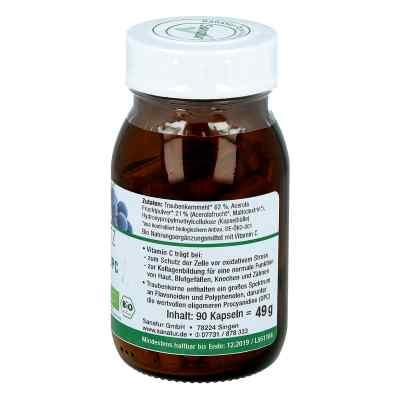 Opc Traubenkern & Vitamine C Kapseln  bei apotheke.at bestellen