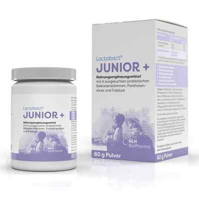 Lactobact Junior Pulver  bei apotheke.at bestellen