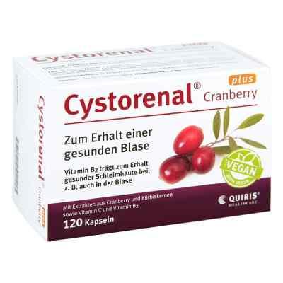 Cystorenal Cranberry plus Kapseln  bei apotheke.at bestellen