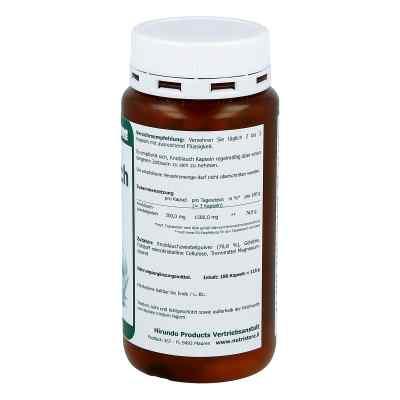 Knoblauch 500 mg geruchsarm Kapseln  bei apotheke.at bestellen