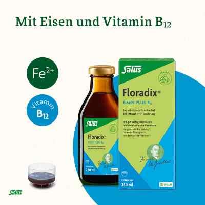 Floradix Eisen plus B12 vegan Tonikum  bei apotheke.at bestellen