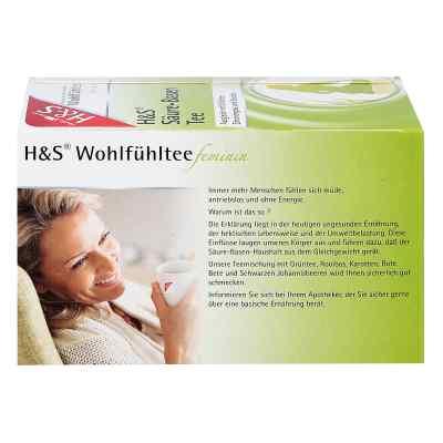 H&s Wohlfühltee feminin Säuren Basen Tee Filterb  bei apotheke.at bestellen
