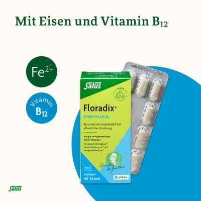 Floradix Eisen plus B12 vegan Kapseln  bei apotheke.at bestellen