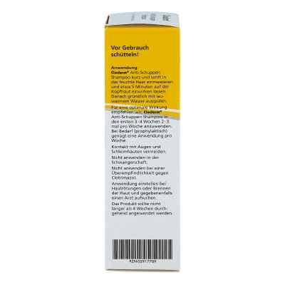 Cloderm Anti Schuppen Shampoo  bei apotheke.at bestellen