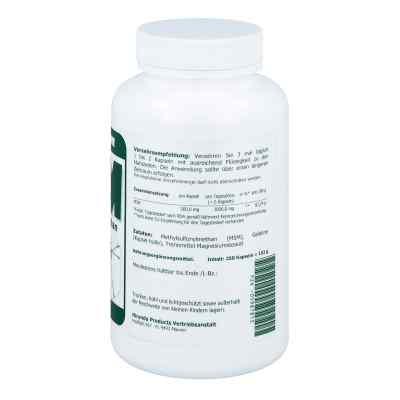Msm 500 mg Methylsulfonylmethan Kapseln  bei apotheke.at bestellen