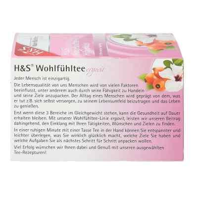 H&s Hagebutte mit Hibiskus Filterbeutel  bei apotheke.at bestellen