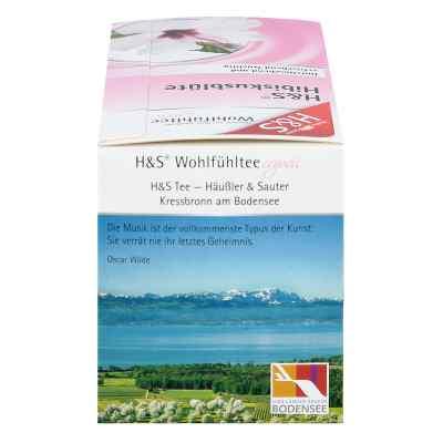 H&s Hibiskusblüte Filterbeutel  bei apotheke.at bestellen