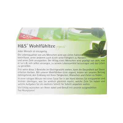 H&s Bio Grüntee Filterbeutel  bei apotheke.at bestellen