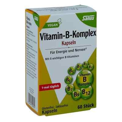 Vitamin B Komplex vegetabile Kapseln Salus  bei apotheke.at bestellen