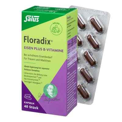 Floradix Eisen plus B Vitamine Kapseln  bei apotheke.at bestellen