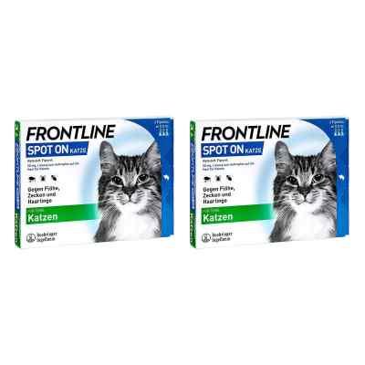 Frontline Spot on Katze veterinär Lösung gegen Floh und Zecke  bei apotheke.at bestellen