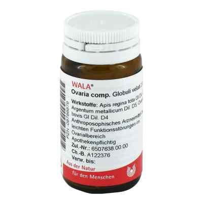 Ovaria Comp. Globuli  bei apotheke.at bestellen
