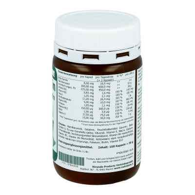 Beta Carotin 8 mg Bräunungskapseln  bei apotheke.at bestellen
