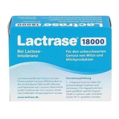 Lactrase 18.000 Fcc Kapseln  bei apotheke.at bestellen