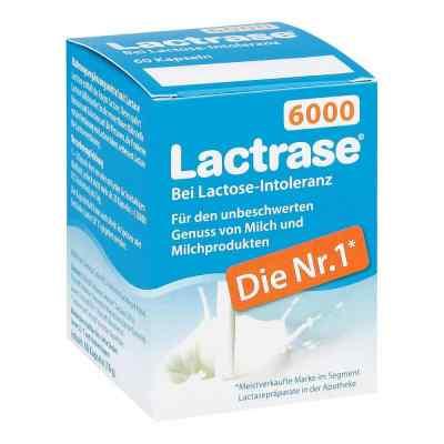Lactrase 6.000 Fcc Kapseln  bei apotheke.at bestellen