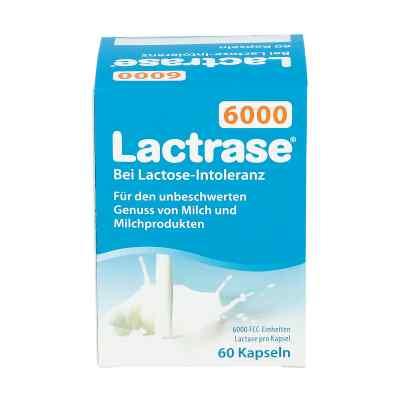 Lactrase 6.000 Fcc Kapseln